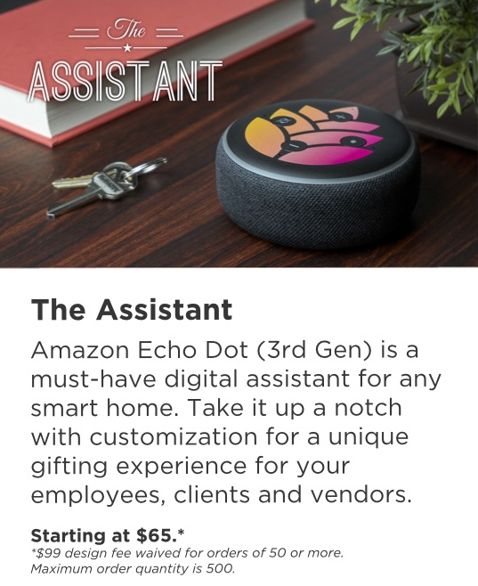 The Assistant: Amazon Echo Dot + one point of customization